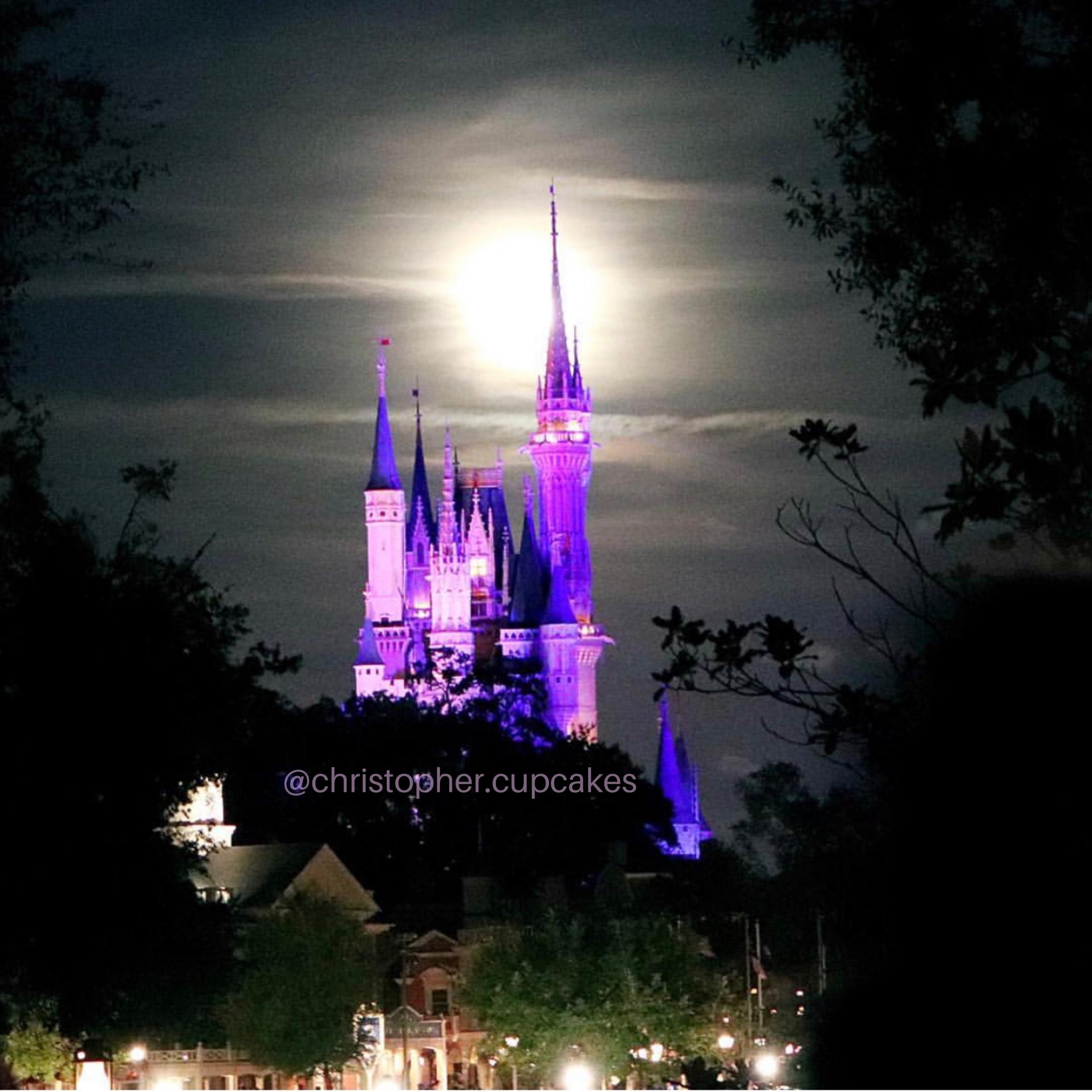 Disney walls, Disney Instagram, Disney photo spots, best Disney photos, Disney instagramable, Disney instagrammable, Disney purple wall,