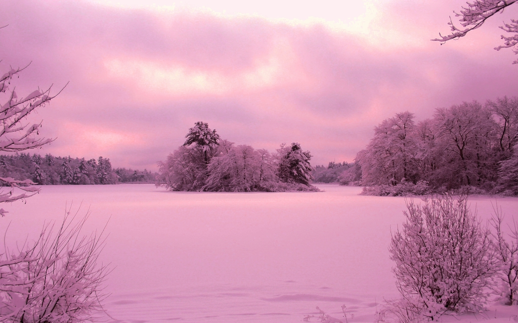 pink winter, pink christmas, winter wellness, winter rituals, combat holiday depression, holiday depression, seasonal affective disorder, wellness blog, wellness blogger, clean beauty blog, clean beauty blogger, holiday stress, holiday anxiety, mediation, yoga, mindfulness,